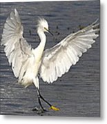 Dancer On The Water Metal Print