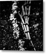 Dandelion Wreath Metal Print