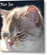 Daphne Cat Miss You Metal Print