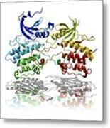 Dapk3 And Pyridone 6 Proteins Metal Print