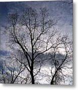 Dark And Stromy Night Trees Metal Print