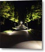 Dark Pathway Metal Print