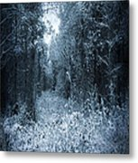Dark Place Metal Print by Svetlana Sewell