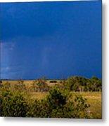 Dark Storm Over The Everglades Metal Print