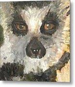 Darth Lemur Metal Print
