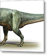 Daspletosaurus Torosus, A Prehistoric Metal Print