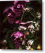 Davinci Orchid Wall Metal Print