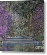 Davis Arboretum Creek Metal Print by Diego Re
