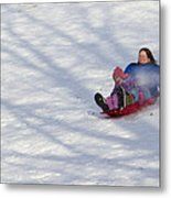 Dawn Flora Sledding 12812c Metal Print