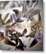 Day Lilies - Abstract Metal Print