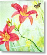 Day Lily Delight Metal Print by Bonnie Barry