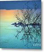 Dead Sea - Withered Bush At Dawn Metal Print