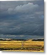 Dead Tree At Dusk With Storm Clouds Metal Print