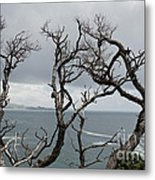 Dead  Trees Metal Print by Yurix Sardinelly