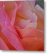 December Rose Metal Print