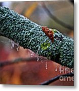 Decorated Branch Metal Print