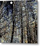 Deep In The Moonlit Forest Metal Print