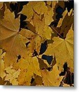 Deep Leaves Metal Print