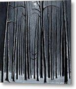 Deep Woods Metal Print