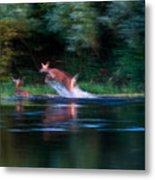 Deer Splash Metal Print