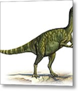 Deinocheirus Mirificus, A Prehistoric Metal Print