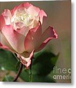 Delany Sister Rose Metal Print