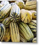 Delicata Winter Squash Metal Print
