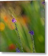 Delicate And Vivid Metal Print