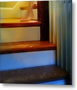 Descending The Stairs Metal Print