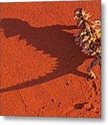 Desert Adapted Thorny Devil Australia Metal Print