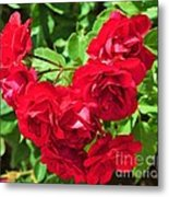Desert Roses Metal Print