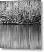 Desolate Splendor Bw Metal Print