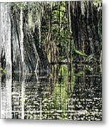 Details Of A Florida River Metal Print