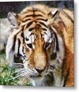 Detroit Tiger Metal Print