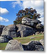 Devil's Den Formation 25 Metal Print