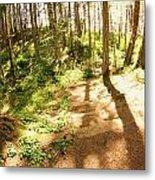 Devonian Park Pathway Metal Print