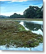 Devoran River Metal Print