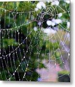 Dewdrops Dimension Metal Print