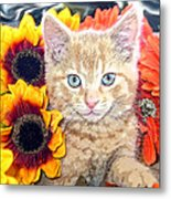 Di Milo - Sun Flower Kitten With Blue Eyes - Kitty Cat In Fall Autumn Colors With Gerbera Flowers Metal Print