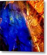 Dichotomy 2 Metal Print by Colleen Cannon