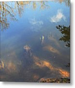 Different Worlds Metal Print