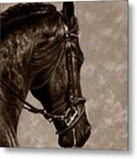 Dignified Classic Metal Print by Loreen Pantaleone