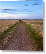 Dirt Road Through The Prairie Metal Print