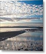 Discovery Park Tidepools Metal Print