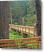 Discovery Trail Bridge Metal Print
