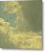 Distant Birds Metal Print by Naomi Berhane