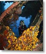Diver Explores The Liberty Wreck, Bali Metal Print