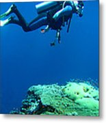 Diver In Deep Metal Print