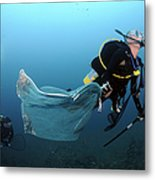Diver Removes Invasive Indo-pacific Metal Print