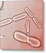 Dividing Bacteria, Computer Artwork Metal Print